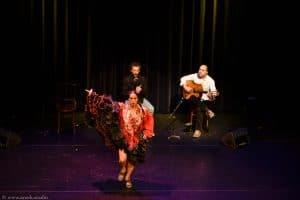 Flamenco optreden boeken met dans en zang