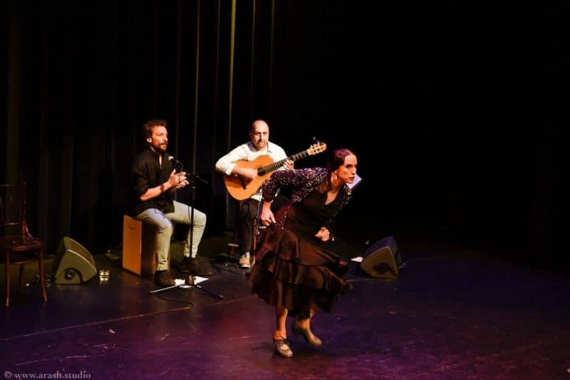 Flamenco optreden boeken